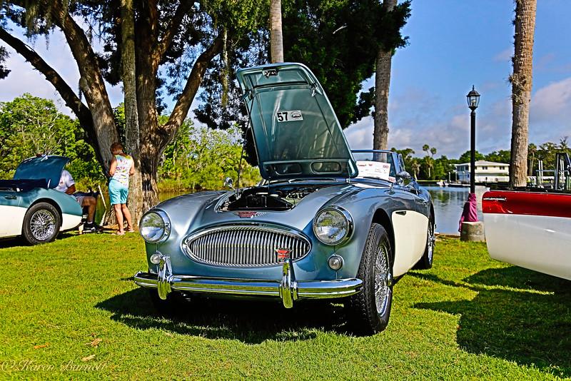 Austin Healy-306