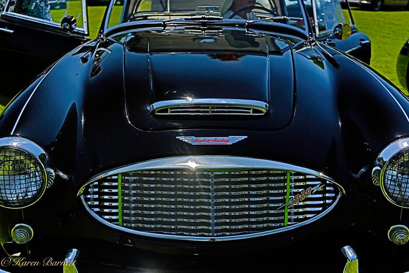 Austin Healy-1431