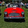 Austin Healy-924