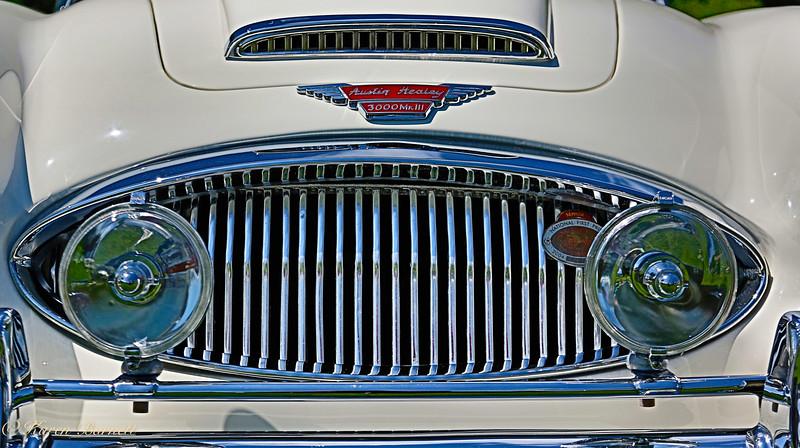 Austin Healy-621
