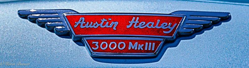 Austin Healy-777
