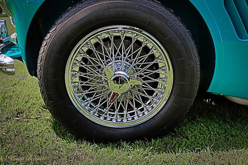 Austin Healy-439
