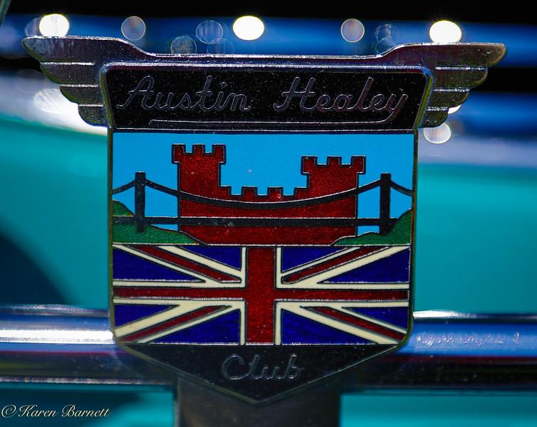 Austin Healy-671
