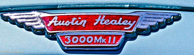 Austin Healy-1343-2