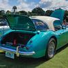 Austin Healy-519