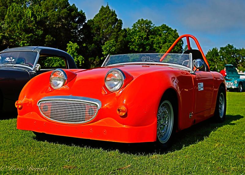 Austin Healy-145