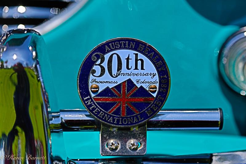 Austin Healy-685