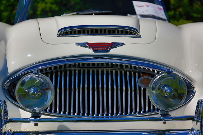 Austin Healy-614