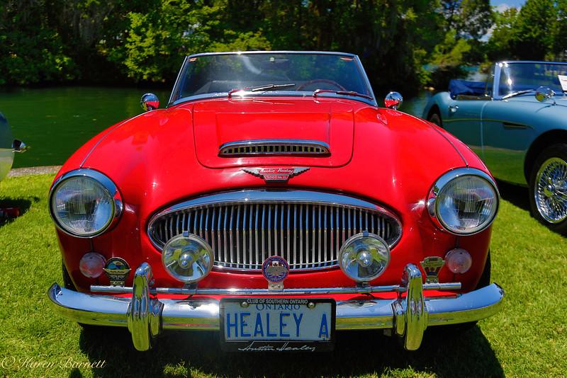 Austin Healy-988