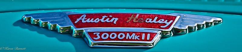 Austin Healy-175-2