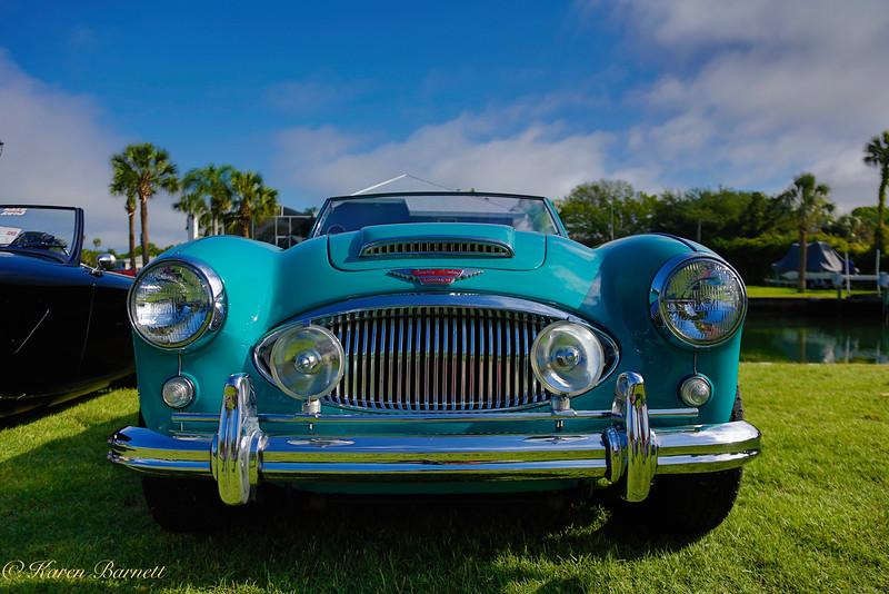 Austin Healy-164