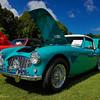 Austin Healy-429