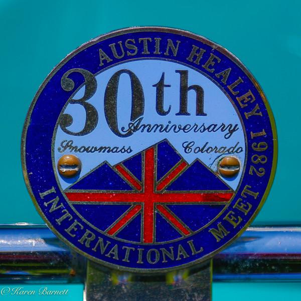 Austin Healy-681
