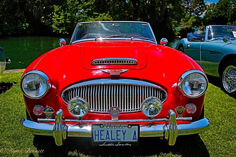 Austin Healy-992