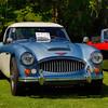 Austin Healy-541