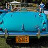 Austin Healy-206