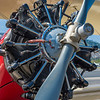 Biplane with Radial Engine