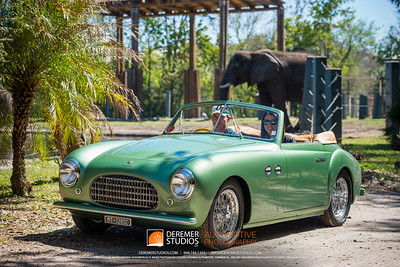 2018 Amelia Concours - Zoo Tour 013A - Deremer Studios LLC