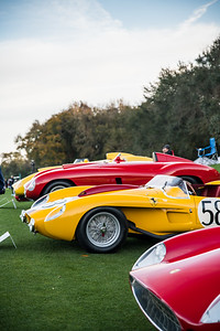 2020 Amelia Concours - Field and Crowd 0162A