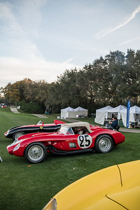 2020 Amelia Concours - Field and Crowd 0792