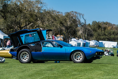 2020 Amelia Concours - Field and Crowd 0015A