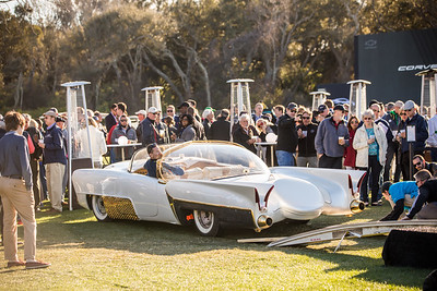 2020 Amelia Concours - Field and Crowd 0023A