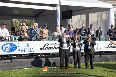 2014 Amelia Island Concourse deElegance