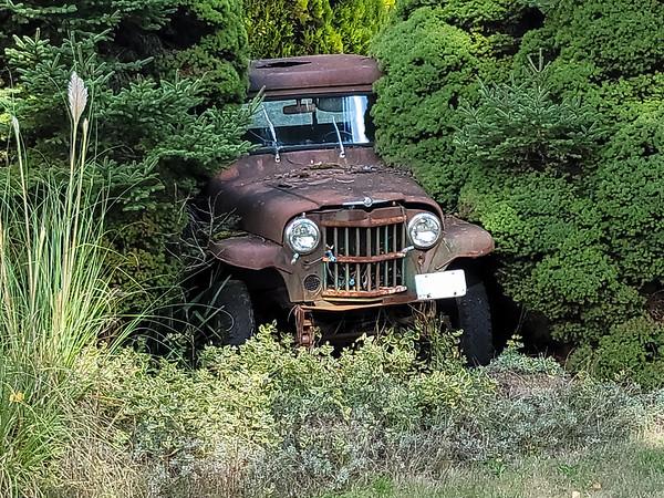Rusty Yard Art