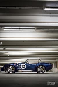 Cobra-294