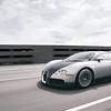 Veyron_17Apr2010_01_02