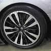 Veyron_17Apr2010_29