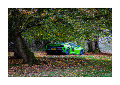 McLaren 675LT Spider in the trees
