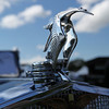 100 Years of Automotive Excellence