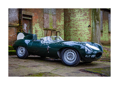 Jaguar D Type