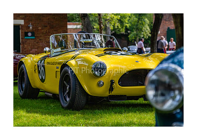 AC Cobra in the sun