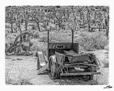 Joshua Tree Truck B&W 1