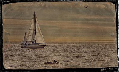 Sail Boat - Tin Type