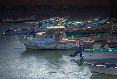 Baja Fishing Fleet