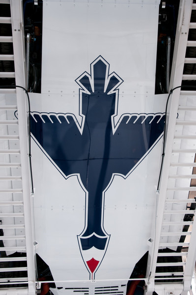 USAF Thunderbirds Ford Mustang