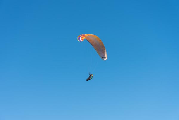 Mooloolaba Para-glider