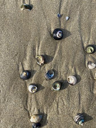 It's raining shells