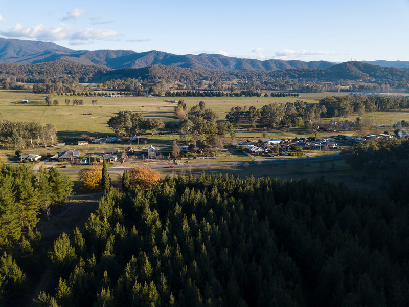 High Country-JUN2018-Myrtleford-Forest-Countryside