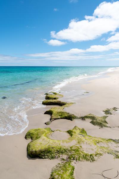 Perth-FEB2019-Cottesloe-Beach-2.jpg