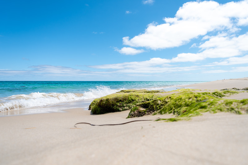 Perth-FEB2019-Cottesloe-Beach-1.jpg