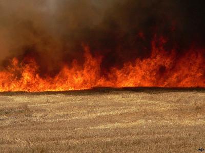 2006 - Le feu ravageur pendant l'été