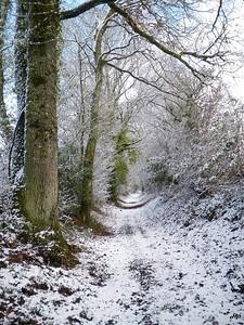 2010 - Chemin creux enneigé fin janvier