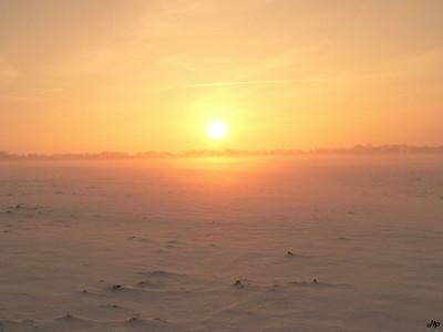 2006 - Lever de soleil sur un champ de colza enneigé
