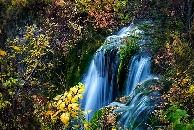 Autumnal Curtain