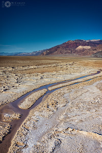 Death Valley National Park, California. Thankgiving break.  Alkali stream south of Badwater Basin.