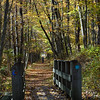 Bashakill wetlands trail